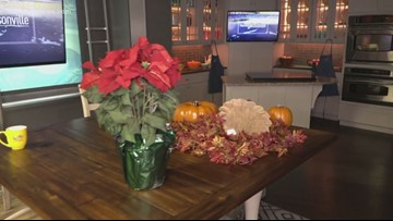 It's 'officially' Christmas on GMJ