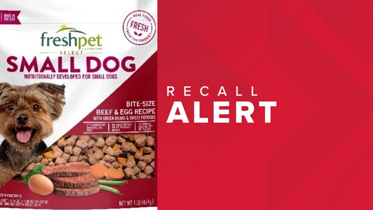 Dog food possibly contaminated with salmonella, sold in Florida now under recall