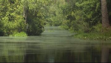 Public concern over proposed titanium strip mine near Okefenokee Wildlife Refuge