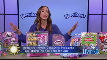 FCL Wednesday November 14th Hatchimals