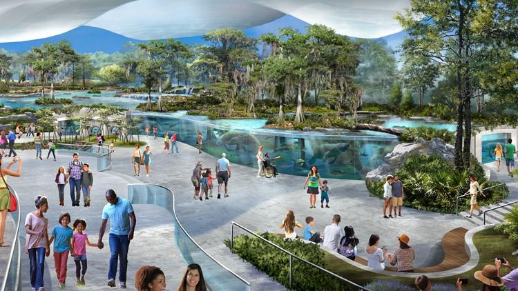 Photos: Jacksonville Zoo announces plans for Manatee River, $50 million renovation campaign