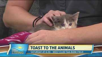 Learn more about the 21st Annual Toast to the Animals event (FCL September 16th)