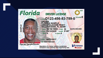 Bills would offer driver's licenses to immigrants living in the US illegally