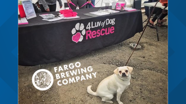 Fargo Brewing Company adoption event