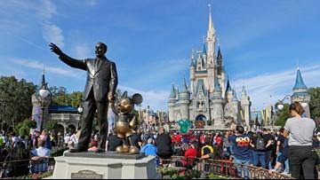Magic Kingdom reached maximum capacity on New Year's Eve