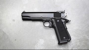 Florida man reports handgun stolen during sex party