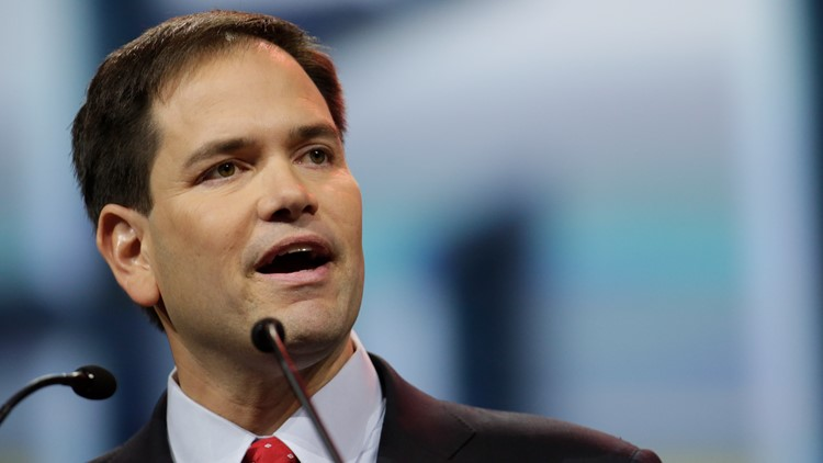 Sen. Marco Rubio introduces bill that targets 'racially hostile school environments', critical race theory
