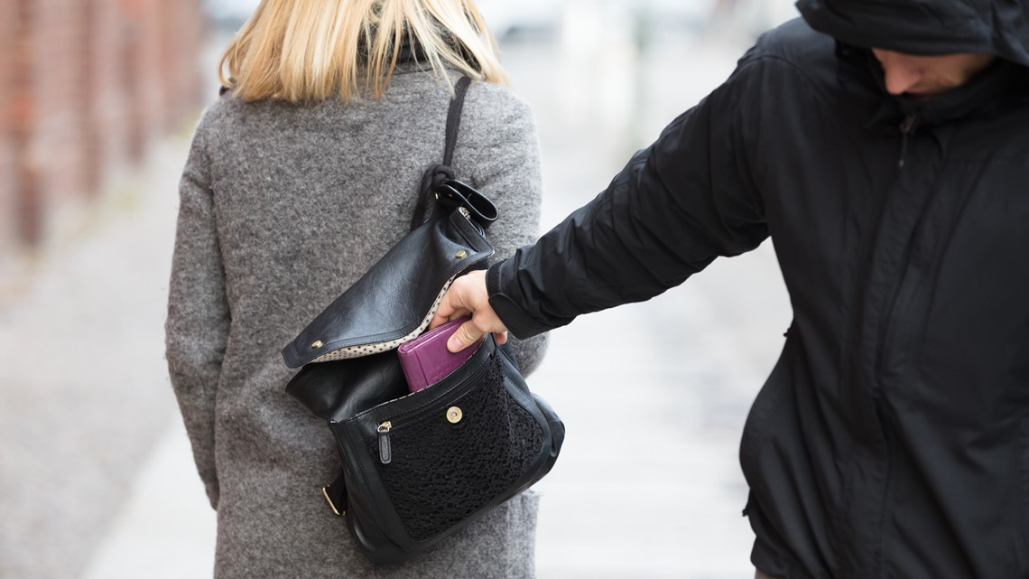 Law enforcement reports increase in purse and wallet thefts along I-95 corridor