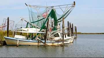 POLLUTION ALERT: Don't eat fish caught in these waters off Louisiana